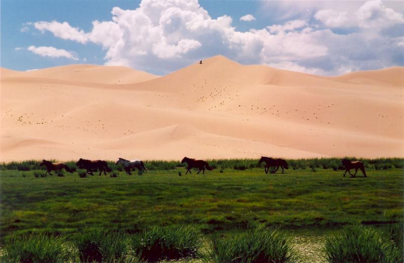 mongolie4